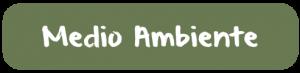 BotoAmbient(c)